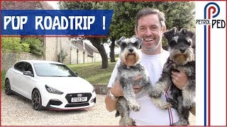 Download Living with the i30N Fastback - PUPS FIRST ROAD TRIP ! Video