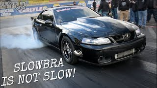 Download SLOWBRA Turbo Cobra Is Not SLOW! Wonder Racing Terminator Video