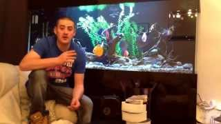 Download How to pick a aquarium canister filter Video