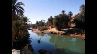 Download AIN SEFRA 12 L'oasis de tiout Video