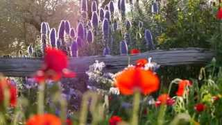 Download UWA Albany Master of Ecotourism Video