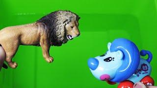Download 야생동물들의 이름과 장난감 친구들을 찾아보고 배우기 Find wild animal friends Video