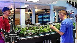 Download My local Aquarium fish store TOUR Video