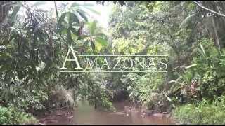 Download Удивительная амазонка: Южная Америка Д/Ф 2012 Video