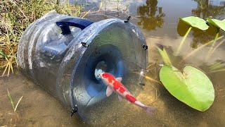 Download MEGA FISH TRAP Catches Rare Colorful Fish Video