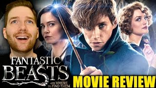 Download Fantastic Beasts and Where to Find Them - Movie Review Video