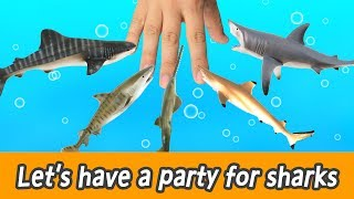 Download [EN] #88 Let's have a party for sharks, kids education, learn sharks name, Collecta figureㅣCoCosToy Video