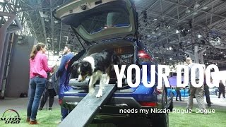 Download The amazing 2018 Nissan Rogue Dogue at the New York Auto Show Video