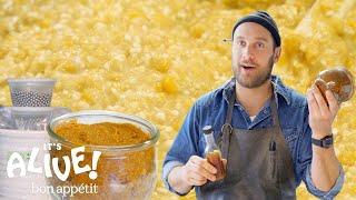 Download Brad Makes Miso Paste | It's Alive | Bon Appétit Video