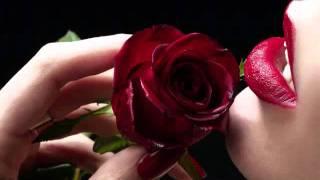 Download Tum Hi Tum Ho MeRi NiGahOn Main Video