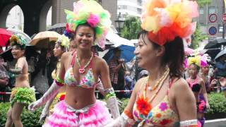 Download 神戸サンバチーム(1)in神戸祭り2013 Video
