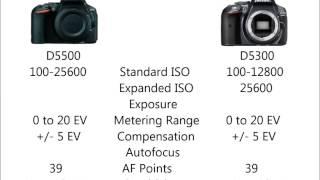 Download D5500 vs D5300 Video