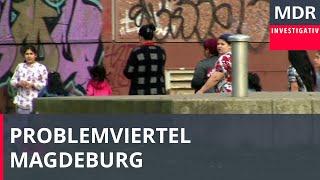 Download Rumänen sorgen für Ärger in Magdeburg   Exakt   MDR Video