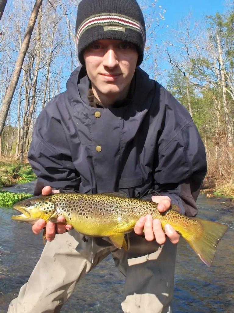 Dry Run Creek Brown