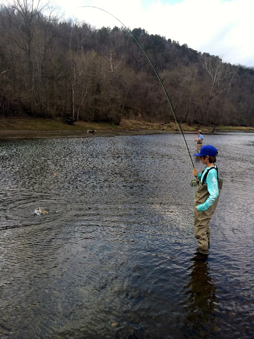 Dally s fly fishing report 3 27 15 the ozark fly for Ruby river fishing report