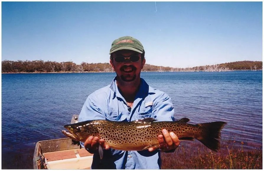 the formative years - wild Tasmanian brown trout