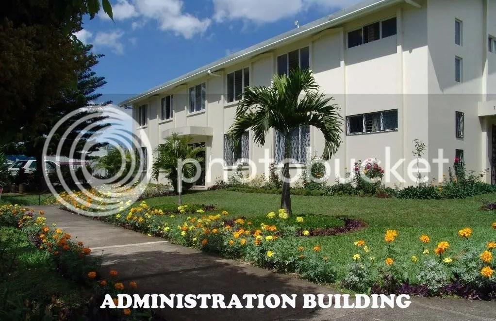 Lang institute