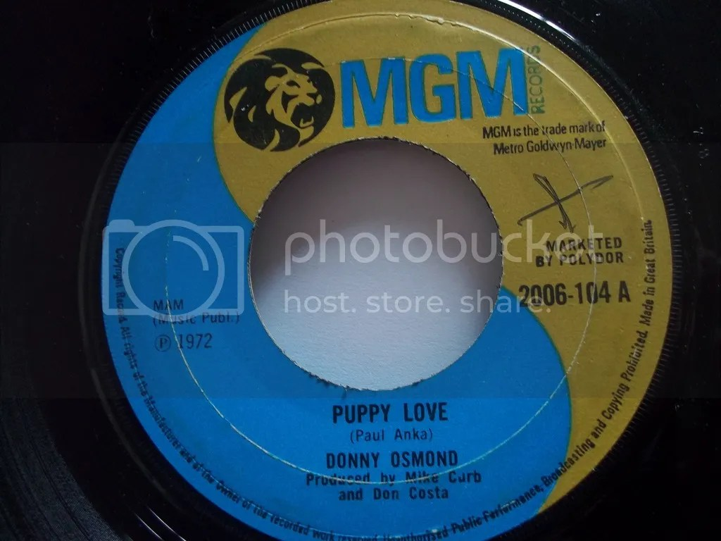 Image result for puppy love 45