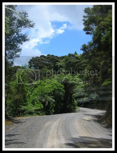 New Zealand - Russel Road