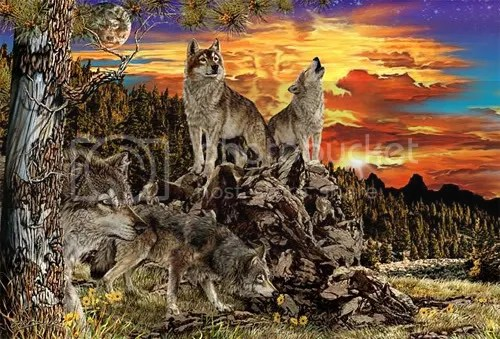 https://i2.wp.com/i207.photobucket.com/albums/bb234/vurdlak8/illusions/17wolves.jpg