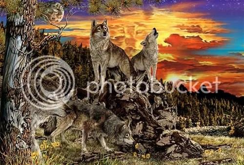 https://i2.wp.com/i207.photobucket.com/albums/bb234/vurdlak8/illusions/17wolves.jpg