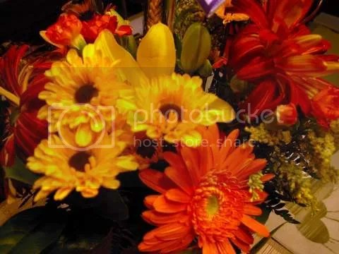 https://i2.wp.com/i208.photobucket.com/albums/bb144/jensmack/flowers-1.jpg