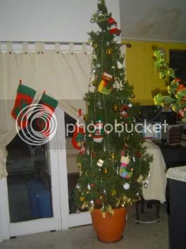 Christmas Tree At Home!