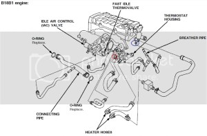 1996 Acura Integra Cooling System Diagram  Wiring Diagram