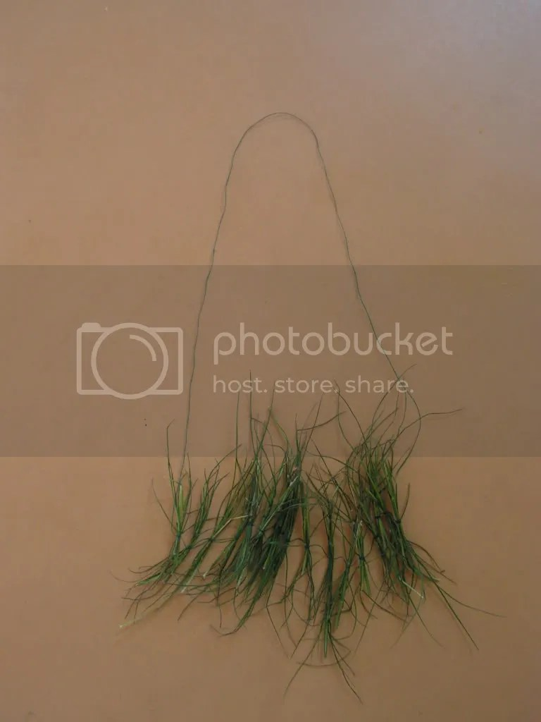 The dhurva garland