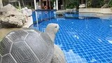 Mae Pim Resort Hotel Thailand