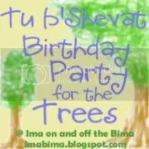 Birthday Party for the Trees at imabima.blogspot.com