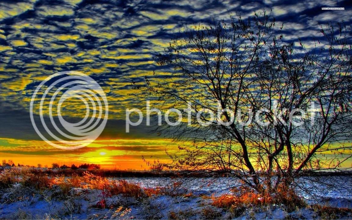 photo Winter_zpsko7mcdqe.jpg