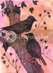 """Păsările """"șervețel"""" - Xaara Novack"""