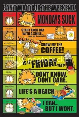 Garfield's Week