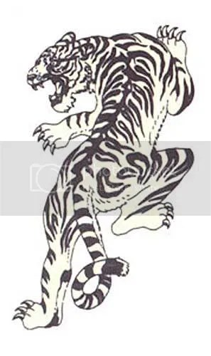 Japanese tigers graphics and comments