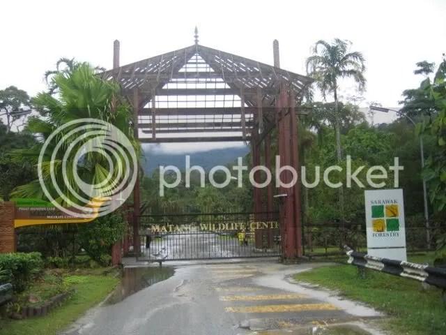 Welcome to Matang
