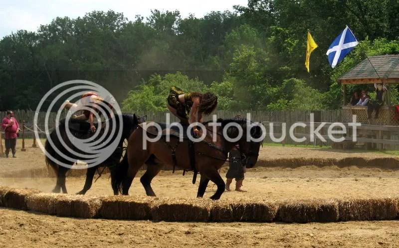 Equestrian Acrobatics