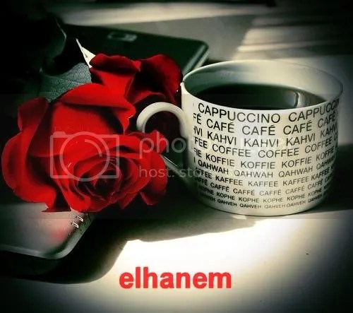2945018692_46c91c5f711.jpg picture by elhanem