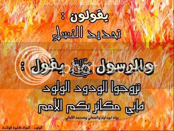 dG758930.jpg picture by elhanem