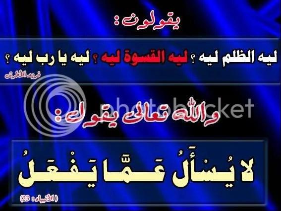 j0558983.jpg picture by elhanem