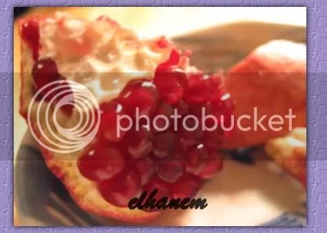 image0041.jpg picture by elhanem