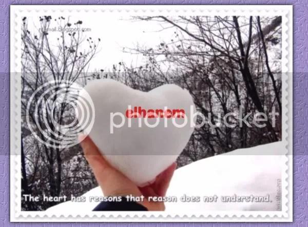 untitledB.jpg picture by elhanem