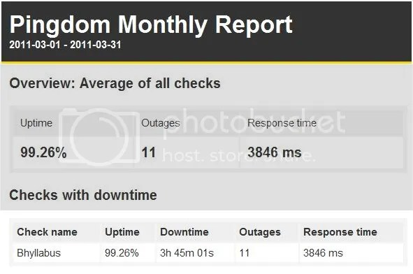 Uptime Reports