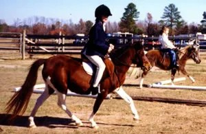 Skye riding Magic english at a show at NSE, Parkton, NC