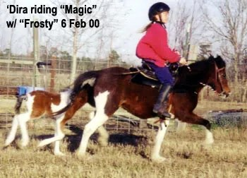 Madira riding Magic