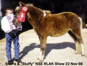 Stuffy98Nov22SiNSEhRedRib.jpg