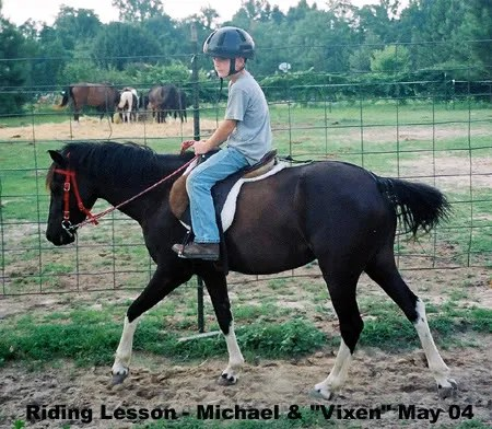 Michael & Vixen - 2004 at LP Painted Ponys, LIllington, NC