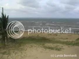 Seashore (c) Lynda Bernhardt