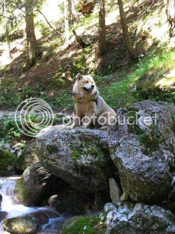 Beim Sebastian - Wasserfall