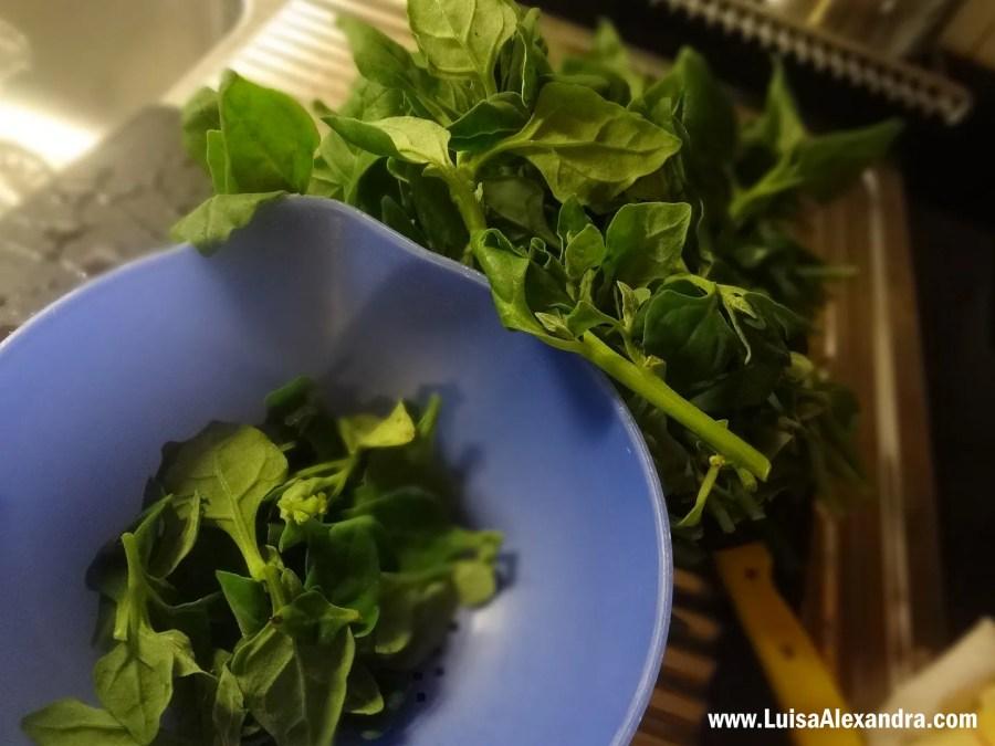 Espinafres Salteados em Azeite e Alho com Esparguete e Nozes photo DSC01980.jpg
